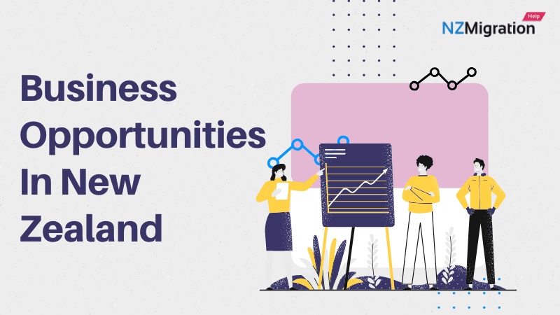 Business Opportunities In New Zealand